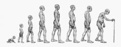 Can posture be changed or controled?